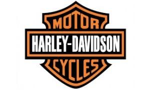 soufflets de fourche neufs pour motos harley davidson